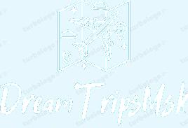 DreamTripsMsk